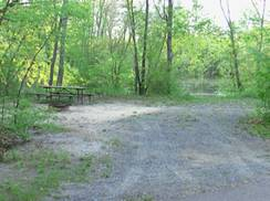 Image for East Fork Campground